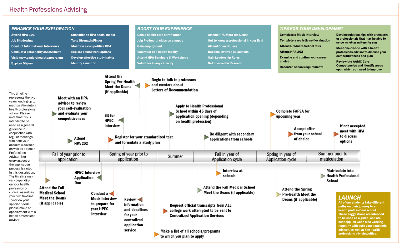 undergraduate timeline for health professions students